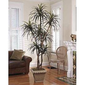 OfficeScapesDirect 8' Dracaena Silk Tree