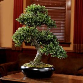 OfficeScapesDirect Bento Bonsai Faux Tree