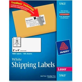 Shipping Labels with TrueBlock Technology, 2 x 4, White, 1000 Labels