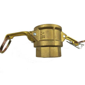 """3/4"""" Brass Type D Coupler with Threaded NPT Female End"""