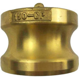 """2"""" Brass Type DP Adapter with Dust Plug"""