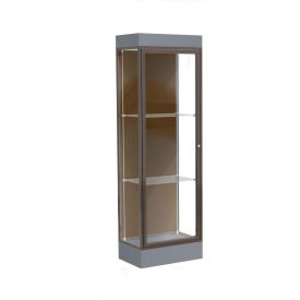 "Edge Lighted Floor Case, Chocolate Back, Dark Bronze Frame, 6"" Carbon Mesh Base, 24""W x 76""H x 20""D"