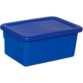 Blue Lid for Cubby Tray