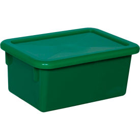 Green Lid for Cubby Tray