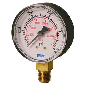 "2.5"" Type 111.10 15PSI/KPA Gauge - 1/4"" NPT LM Polished Brass"