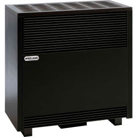 Click here to buy Williams Enclosed Front Room Heater With Blower 6501921A Propane 65000 BTU.