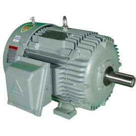 Hyundai T-Frame Motor IEEE10-18-215T, TEFC, Rigid, 3 PH, 215T, 460V, 12.8 FLA