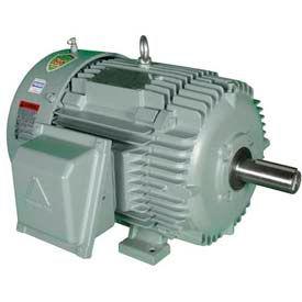 Hyundai T-Frame Motor IEEE125-18-444T, TEFC, Rigid, 3 PH, 444T, 460V, 142 FLA, RB