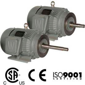 Worldwide Electric CC Pump Motor WWE15-36-254JM, TEFC, Rigid-C, 3 PH, 254JM, 15 HP, 3600 RPM