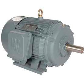 Worldwide Electric T-Frame Motor WWE250-18-449TBB, GP, TEFC, Rigid, 3 PH, 449T, 460V, 282 FLA