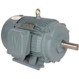 Worldwide Electric T-Frame Motor PEWWE2-12-184T, GP, TEFC, Rigid, 3 PH, 184T, 208-230/460V, 3.3 FLA