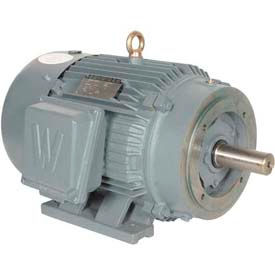 Worldwide Electric T-Frame Motor PEWWE30-18-286TC, GP, TEFC, Rigid-C, 3 PH, 286TC, 36.4 FLA