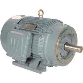 Worldwide Electric T-Frame Motor PEWWE60-18-364TC-F2, GP, TEFC, Rigid, 3 PH, F2, 364TC, 70.5 FLA