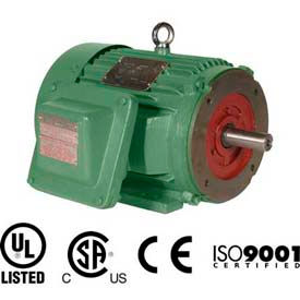 Worldwide Electric EXP Motor XPEWWE10-18-215TC, TEXP, Rigid-C, 3 PH, 215TC, 10 HP, 12.4 FLA