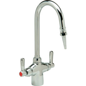 Zurn Z826B1-6F - Deck Mounted Gooseneck Lab Faucet