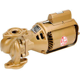 Bronze Body Series 100 BNFI Pump 1/12HP Single Phase