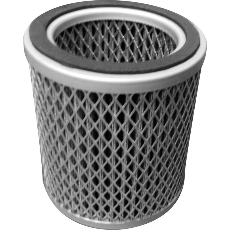 """With Filter Element AIR FILTER BARREL for Regenerative Blowers 1-1//4/"""" IN//OUT"""
