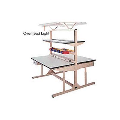 "Pro-Line Overhead Light Kit, 72""W, Tan"