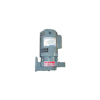 Watchman B-Style Pump & Motor 1/3 HP 3500