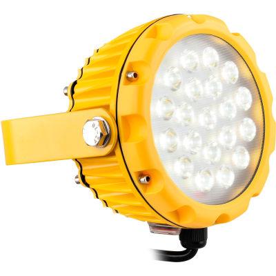Global™ LED Dock Light Head Only, 20W, 1800 Lumens, 5000K, On/Off Switch, 9' Cord w/Plug