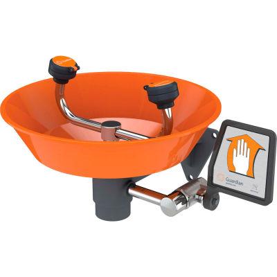 Guardian Equipment  Eye Wash Fountain, G1814P