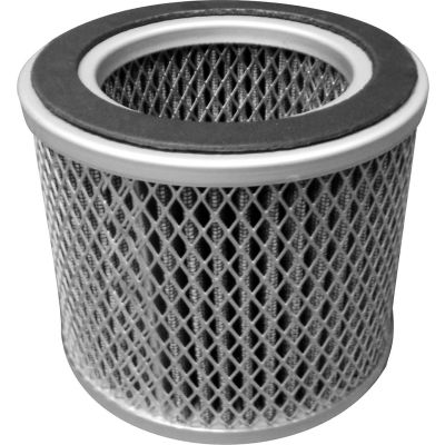 Atlantic Blowers Pressure Filter Element AB-EP10003, 2""