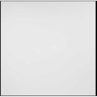 Genesis Designer Border Fill PVC Ceiling Tile 756-00, 2'L X 2'W, White - 12/Case