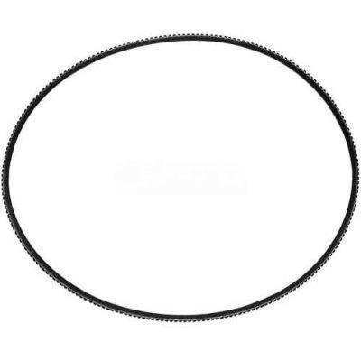"Short Belt 3/16"" x 22"" For Berkel, BER402375-00015"