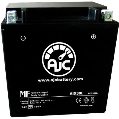 AJC Battery BMW K100S K100RT 1000CC Motorcycle Battery (1983), 30 Amps, 12V, B Terminals