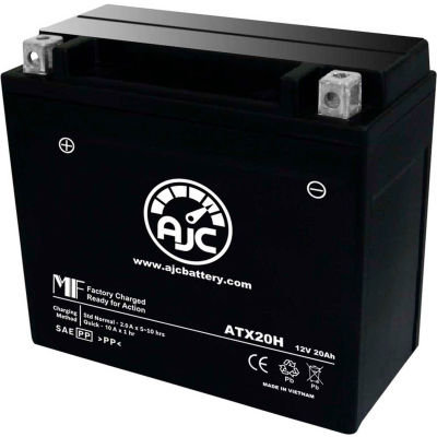 AJC Battery Arctic Cat Bearcat WT Snowmobile Battery (1995-2002), 20 Amps, 12V, B Terminals