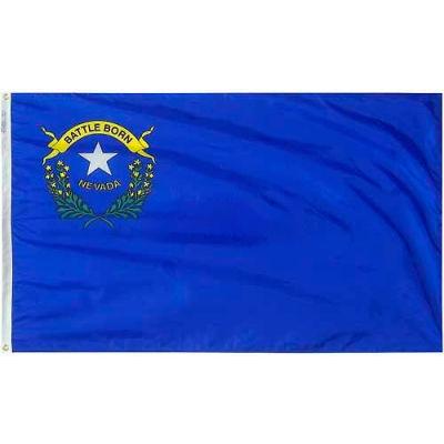 4X6 Ft. 100% Nylon Nevada State Flag