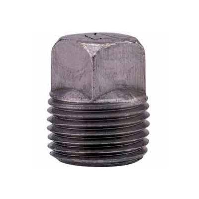 1/2 In. Black Malleable Square Head Plug 150 PSI Lead Free