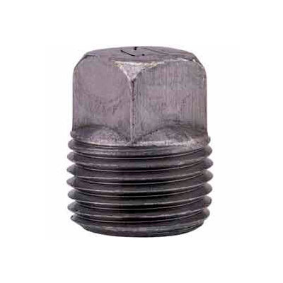 1-1/2 In. Black Malleable Square Head Plug 150 PSI Lead Free