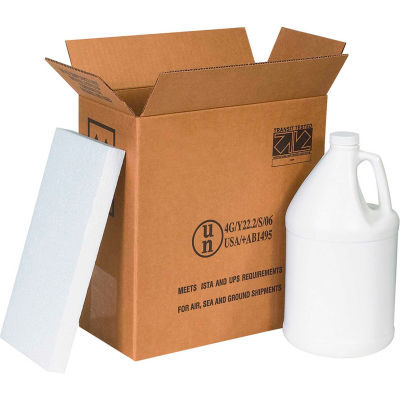 "Two - 1 Gallon Plastic Jug Haz Mat Shipper Kit, 12"" x 6"" x 12-3/4"""