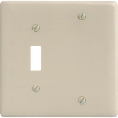 Bryant NP113I Toggle Blank Combo Plate, 2-Gang, Standard, Ivory Nylon