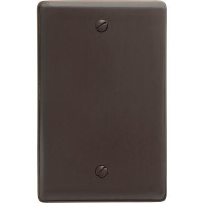 Bryant NP13 Box Mounted Blank Plate, 1-Gang, Standard, Brown Nylon
