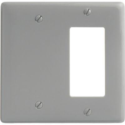 Bryant NP1326GY Blank Styleline Combo Plate, 2-Gang, Standard, Gray Nylon