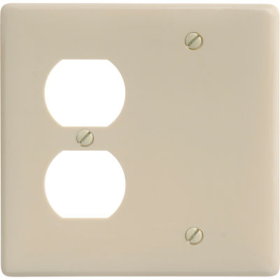 Bryant NP138I Blank Duplex Combo Plate, 2-Gang, Standard, Ivory Nylon