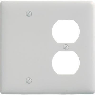 Bryant NP138W Blank Duplex Combo Plate, 2-Gang, Standard, White Nylon