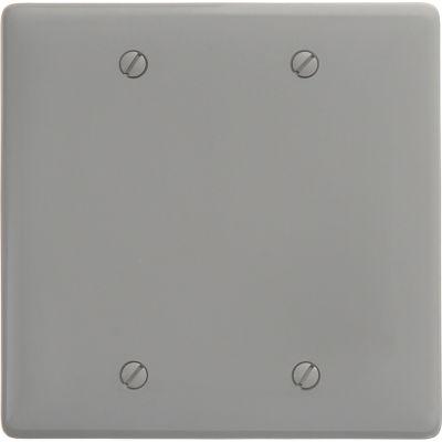 Bryant NP23GY Box Mounted Blank Plate, 2-Gang, Standard, Gray Nylon
