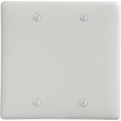 Bryant NP23W Box  Mounted Blank Plate, 2-Gang, Standard, White Nylon