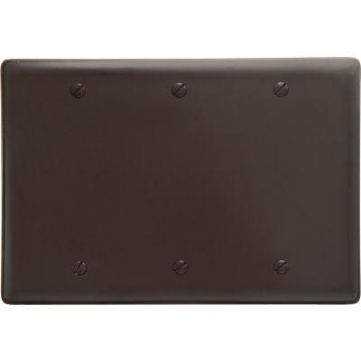 Bryant NP33 Box Mounted Blank Plate, 3-Gang, Std, Brown Nylon