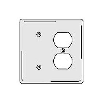 Bryant NPJ138W Blank Duplex Combo Plate, 2-Gang, Mid-Size, White Nylon