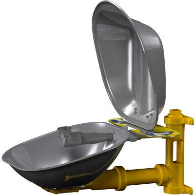 Bradley® Eyewash, SS Bowl & Dust Cover - S19224DC