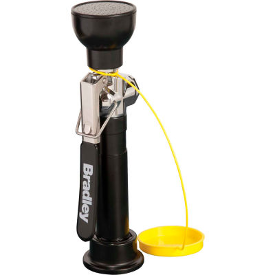 Bradley® Deck-Mounted Hand-Held Hose Spray - S19-460