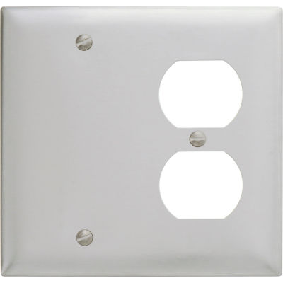 Bryant SS138 Blank Duplex Combo Plate, 2-Gang, Standard, Satin Stainless