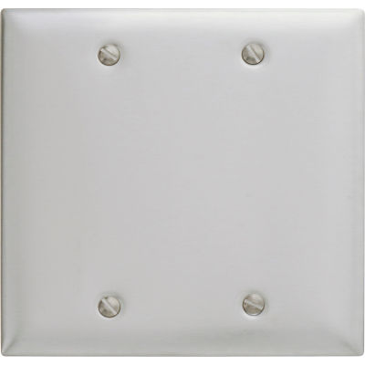 Bryant SS23 Box Mounted Blank Plate, 2-Gang, Standard, Satin Stainless