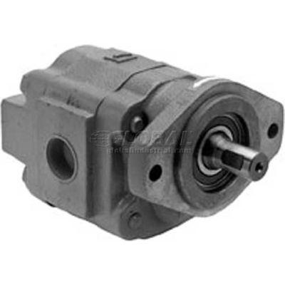 "Buyers H50 Series Hydraulic Pump, H5032203, 2 Bolt, 2500 Max Pressure, 1"" Keyed 1/4 KW Shaft"