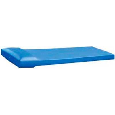 """Cortech USA - C453075P - Standard Correctional Tech Mattress - Blue - 4.5"""" x 30"""" x 75"""" with Pillows"""