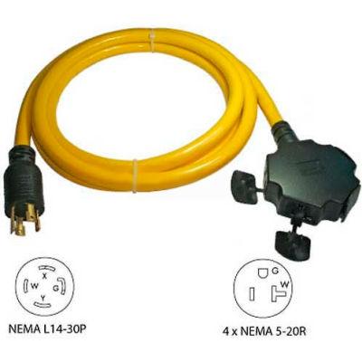 Conntek, 20610-010 10', 30A, Generator Power Cord with NEMA L14-30P to 5-15/20R*4
